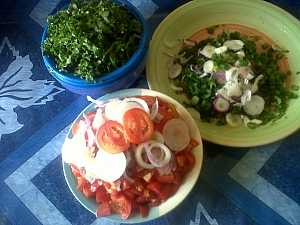 Sliced onions, spinach and tomatoes