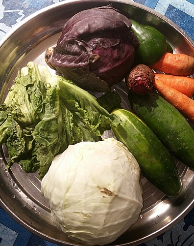 Fresh vegetables for salad recipe