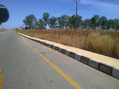 Lamingo road