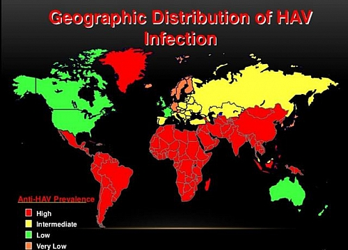 Worldwide distribution of Hepatitis A across different continents and countries