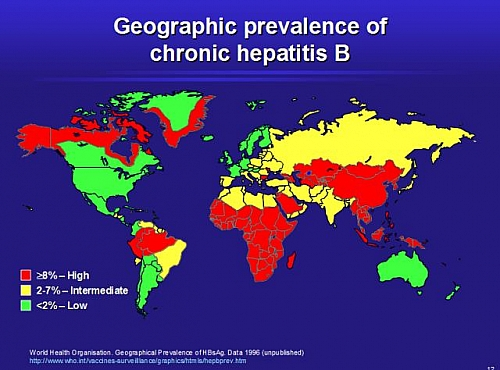 W.H.O (World Health Organization) Hepatitis B Map showing the Prevalence rate across the countries of the World