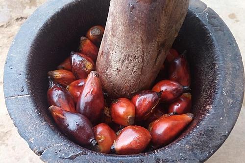 Pounding process of palm fruits for atama soup