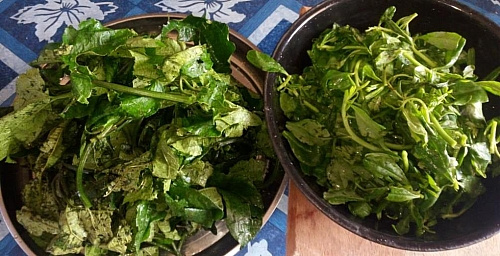 Fresh ugwu and water leaves for the preparation of edikaikong soup