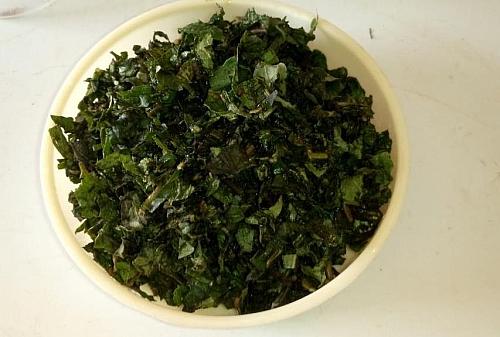 Fresh scent leaves,(Basil, Nchaunwu) for making yam pepper soup