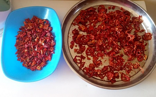 Sun dried tomatoes: both the peppers and tomatoes will shrink in and become small after drying which is a good sign that all the moisture has escaped from them