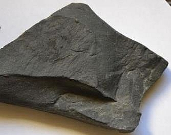 Picture of shale, a clastic sedimentary rock