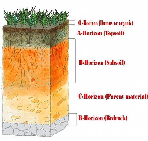Layers Of Soil  Definition  Description With Diagram  Soil