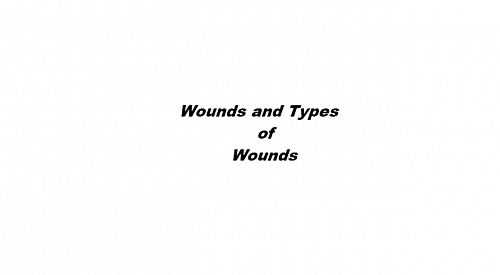 Clean incised wound (Tidy wound) of the index finger