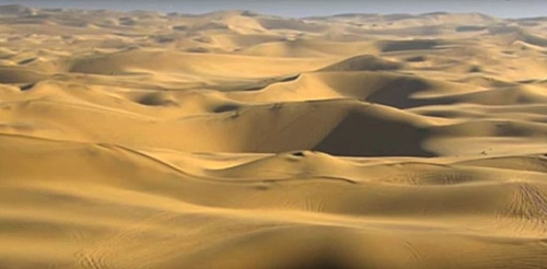 Photo of Desert Biomes:Desert Biome facts, Location, Plants and Animals