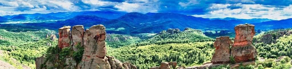 Landscape showing rocks and vegetation in a vast ecosystem