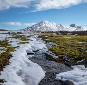 Tundra biome showing permafrost and semi-frozen landscape
