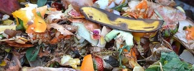 compost as biomass feedstocks