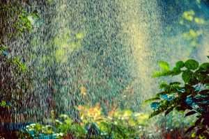 Spray of water from an irrigation system